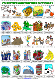 Collective Nouns ESL Picture Dictionary Worksheet