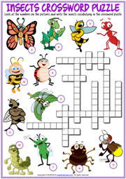 Insects ESL Printable Worksheets and Exercises