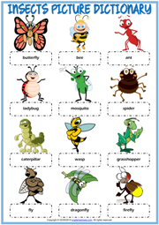 Insects ESL Printable Picture Dictionary Worksheet For Kids