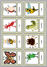 Insects ESL Printable Vocabulary Learning Cards For Kids